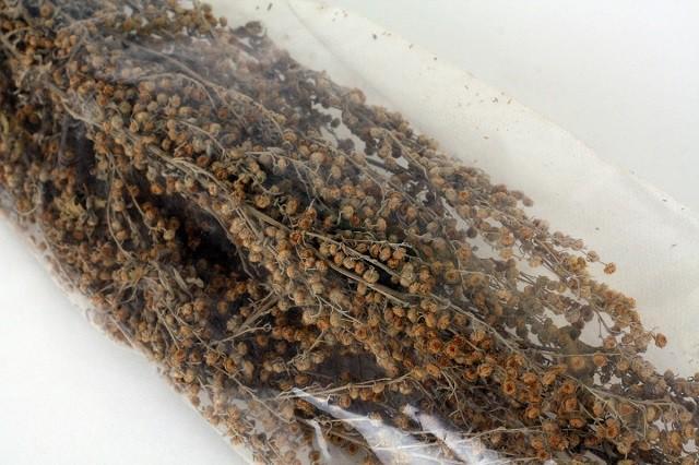 Добавление в веники сушеной полыни дает  отличный результат