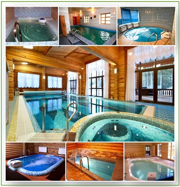Варианты обустройства бани с бассейном