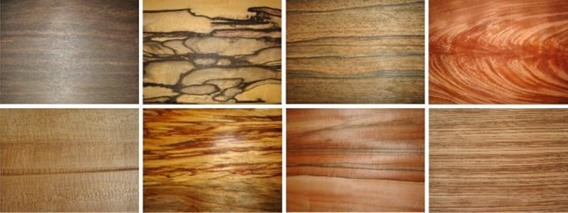 Древесина - природный живой материал