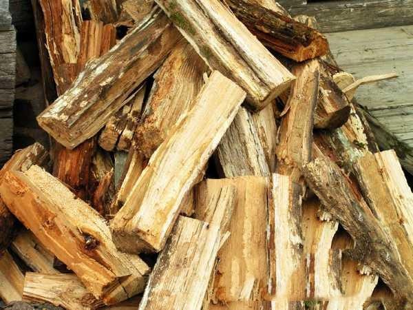 К выбору дров стоит подойти ответственно