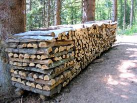 Какие дрова использовать для топки