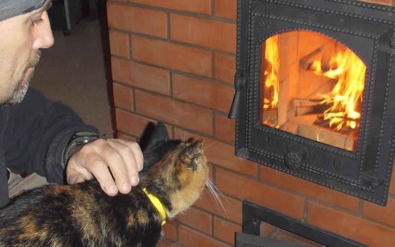 Печь горит отлично - наблюдаем за пламенем через стеклянную дверцу
