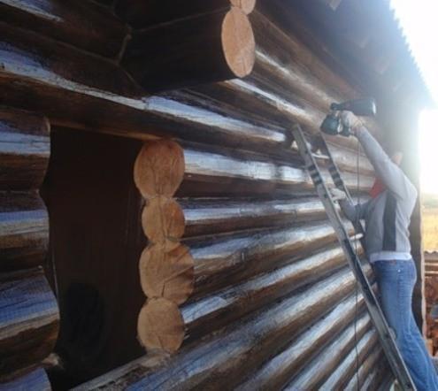 Защита антисептиком древесных конструкций
