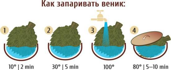 Схема запаривания веника