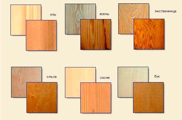 Текстура разных пород древесины