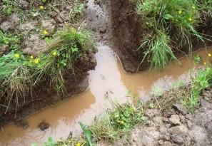 Высоко расположенные грунтовые воды, которые необходимо отводить от фундамента, обустраивая дренаж
