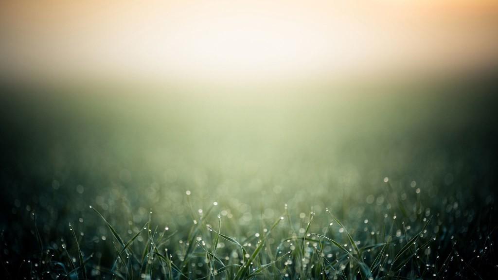 Туман и роса не укажут на расположение водоносных слоев