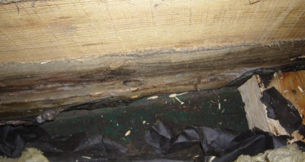 Подгнившая древесина