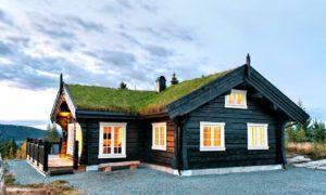 Норвежская рубка. Дома и бани из лафета