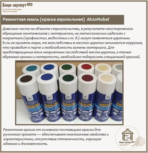 Ремонтная эмаль (краска аэрозольная) AkzoNobel